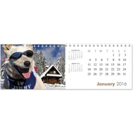 Personalised Dogs Calendar - Any Start Month