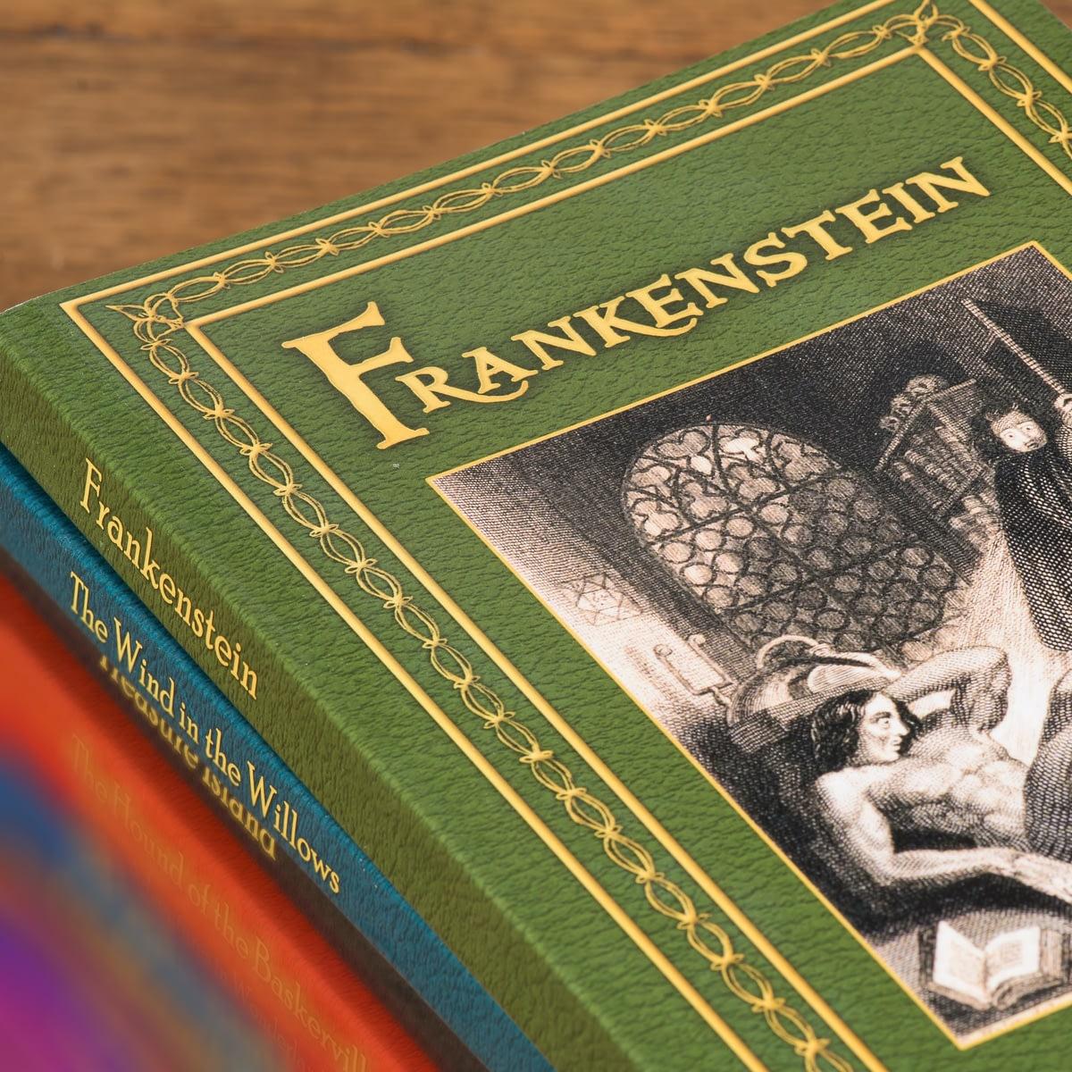 mary shelley frankenstein synopsis