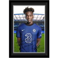 Personalised Chelsea FC Abraham Autograph Photo Framed