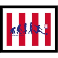 Personalised Stoke City Evolution Framed Print