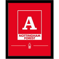 Personalised Nottingham Forest FC Monogram Framed Print