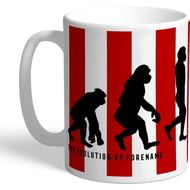Personalised Brentford Evolution Mug