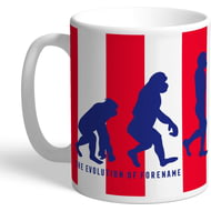 Personalised Stoke City Evolution Mug